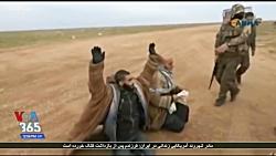 تسلیم شدن عناصر داعش به نیروهای تحت حمایت آمریکا