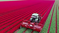 10 فناوری زراعی که هوش ا...