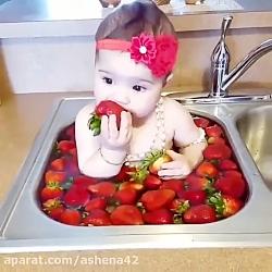 عسل ، با توت ! .