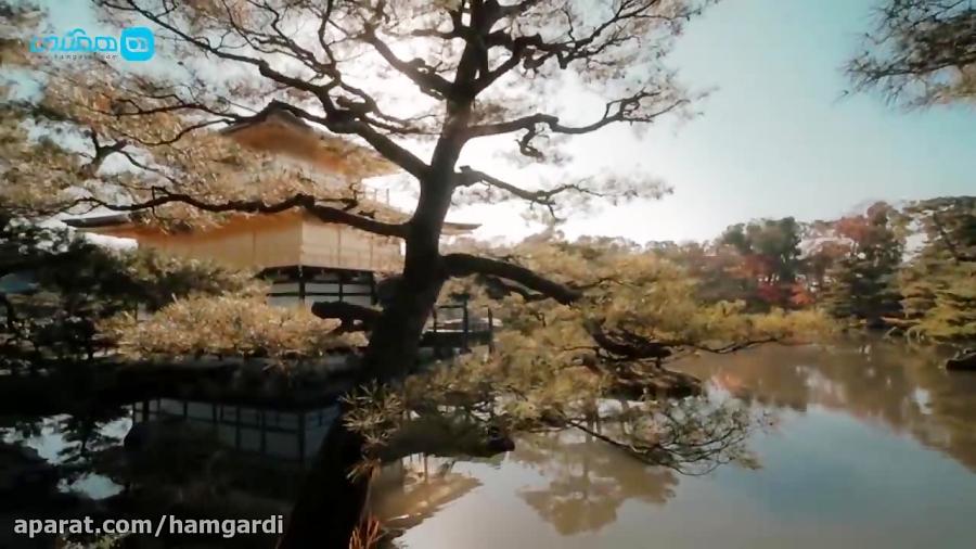 سفر هیجان انگیز به کیوتو