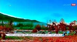 محسن چاووشی - آهنگ سودایی