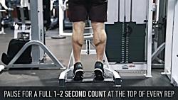 آموزش تمرین علمی عضلات ...