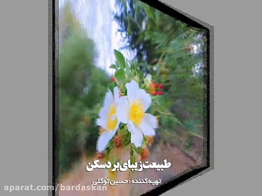 تصاویری از طبیعت زیبای بهاری شهرستان بردسکن