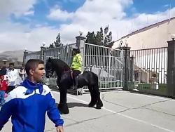 پلیس های اسب سوار در ورزشگاه آزادی