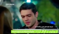 HomayounAbdollahi