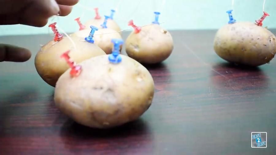 free energy patato