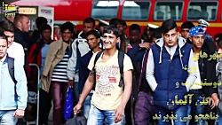 خبر جدید پناهندگی آلما...