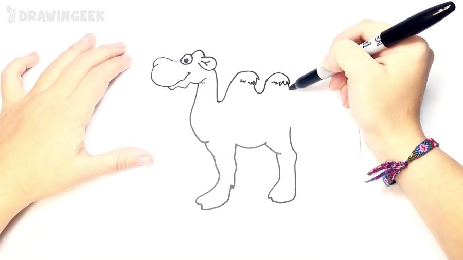 Cómo dibujar un Camello para niños   Dibujo de Camello paso a paso
