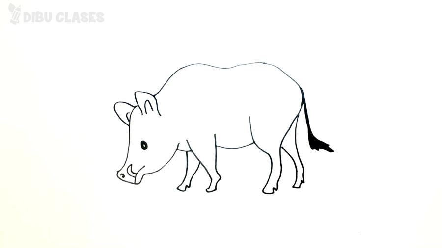 Cómo Dibujar Un Jabali Paso A Paso Dibujo Fácil De Jabali