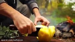 آشپزی در طبیعت_ مرغ نمک...