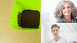 طرز تهیه رنگ مو طبیعی در منزل | Microsoftco.ir
