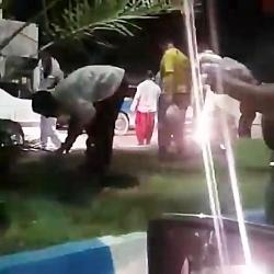 حمله مردم به ملخ هایی که به ایران حمله کرده بودند و خوردن ملخ ها