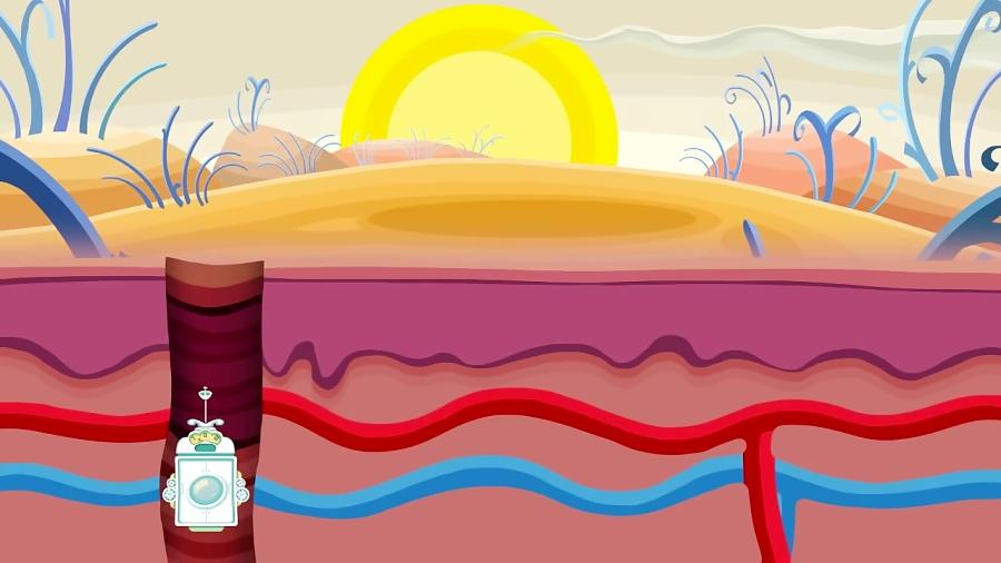 انیمیشن آموزشی : عملکرد پوست چگونه است؟