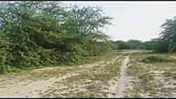 m.mohamadi4977