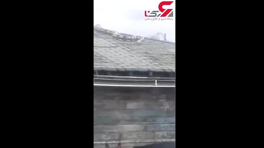 چنبره وحشتناک مار غول پیکر در پشت بام شیروانی یک خانه!