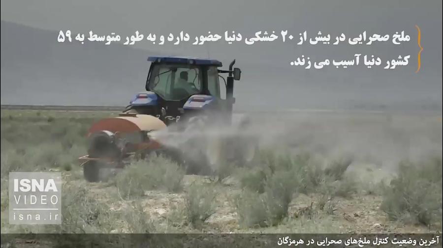 آخرین وضعیت کنترل ملخ های صحرایی در هرمزگان