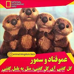 نشنال جئوگرافیک فارسی