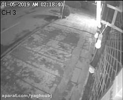 دزدی دوربین مداربسته مشهد 1398 02 11
