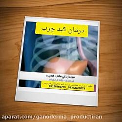 کبد چرب و درمان بدون عوارض دارویی درمان دیابت کبد چرب فشارخون سرطان ویتیلیگو