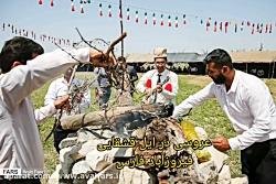پایگاه خبری اول فارس