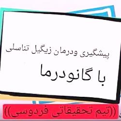 09051063358 درمان تب خال یا زگیل تناسلی با مصرف گانودرما ایرانی زیبا و سلامت باش