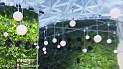 افتتاح ساختمان جديد سبز شركت آمازون