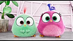 اولین تریلر انیمیشن The Angry Birds Movie 2