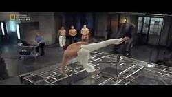 مقایسه کاراته، تکوادو، موی تای و کاپوِئرا