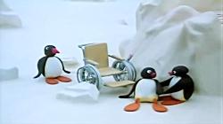 کارتون پینگو جدید | Pingu