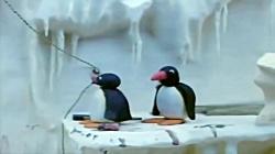 کارتون پینگو | Pingu