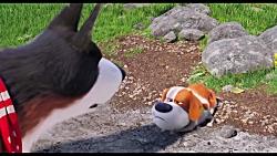 تریلر انیمیشن سینمایی The Secret Life of Pets 2