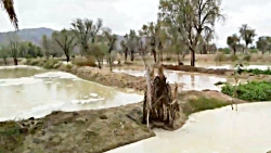 طبیعت روستای چاهو