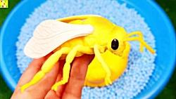 یادگیری حیوانات دریایی...