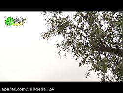 گردشگری - چشمه بلقیس
