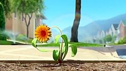 انیمیشن زیبا ولی کوتاه