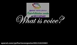 گفتاردرمانی بزرگسالان برای رفع اختلالات تکلم دراثرآسیبهای جسمانی|گفتار توان گستر