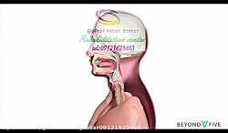 بیماری اختلال در بلع چیست و چطور درمان میشود؟ |گفتار توان گستر کرج