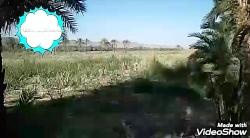 طبیعت بکر روستای کوشوک