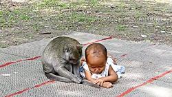 اذیت کردن بچه توسط میمون