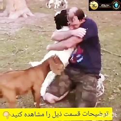 حیوانات احساس دارند