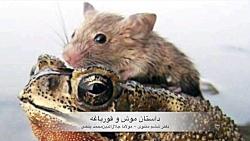 داستان موش و قورباغه، م...