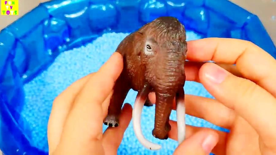 یادگیری رنگ با حیوانات دریایی و حیوانات وحشی حیوانات اسباب بازی