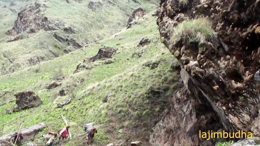 زندگی تحت سنگ غول پیکر    نپال    زندگی چوپان    زندگی پستانداران   