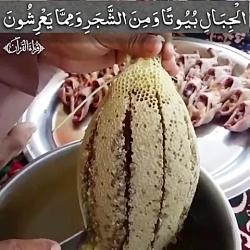 العسل فی القرآن / عسل در...