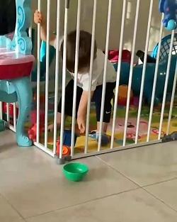 کاردرمانی در منزل برای کودکان اوتیسم و بیش فعالی 09189687352