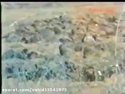 فیلم تلویزیون عراق درباره شهادت مجید تقی زاده در عملیات کربلای-4 - وحید تقی زاده