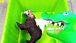 یادگیری حیوانات مزرعه حیوانات باغ وحش حیوانات برای کودکان و نوجوانان با خوک اسب
