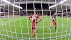 حیوانات در زمین فوتبال ! لحظه های شاد در فوتبال خیلی باحله