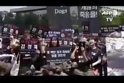 سگ خوران و پرورش دهندگان سگ در کره جنوبی در پاسخ به جنبش ضد سگ خورها دست به تظاه