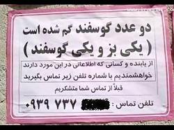 عکسهای خنده دار ایران